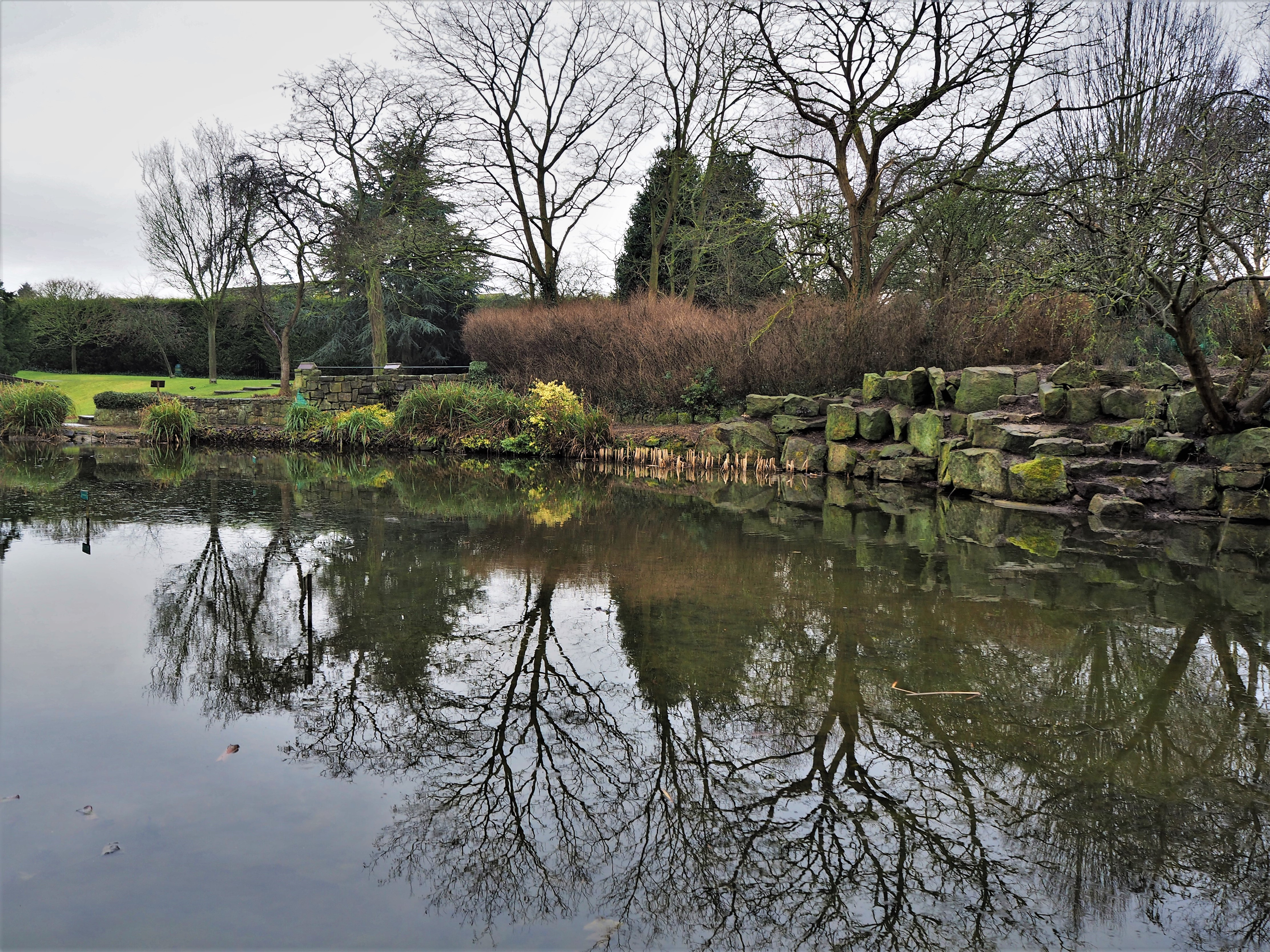Reflections at Burnby, Pocklington