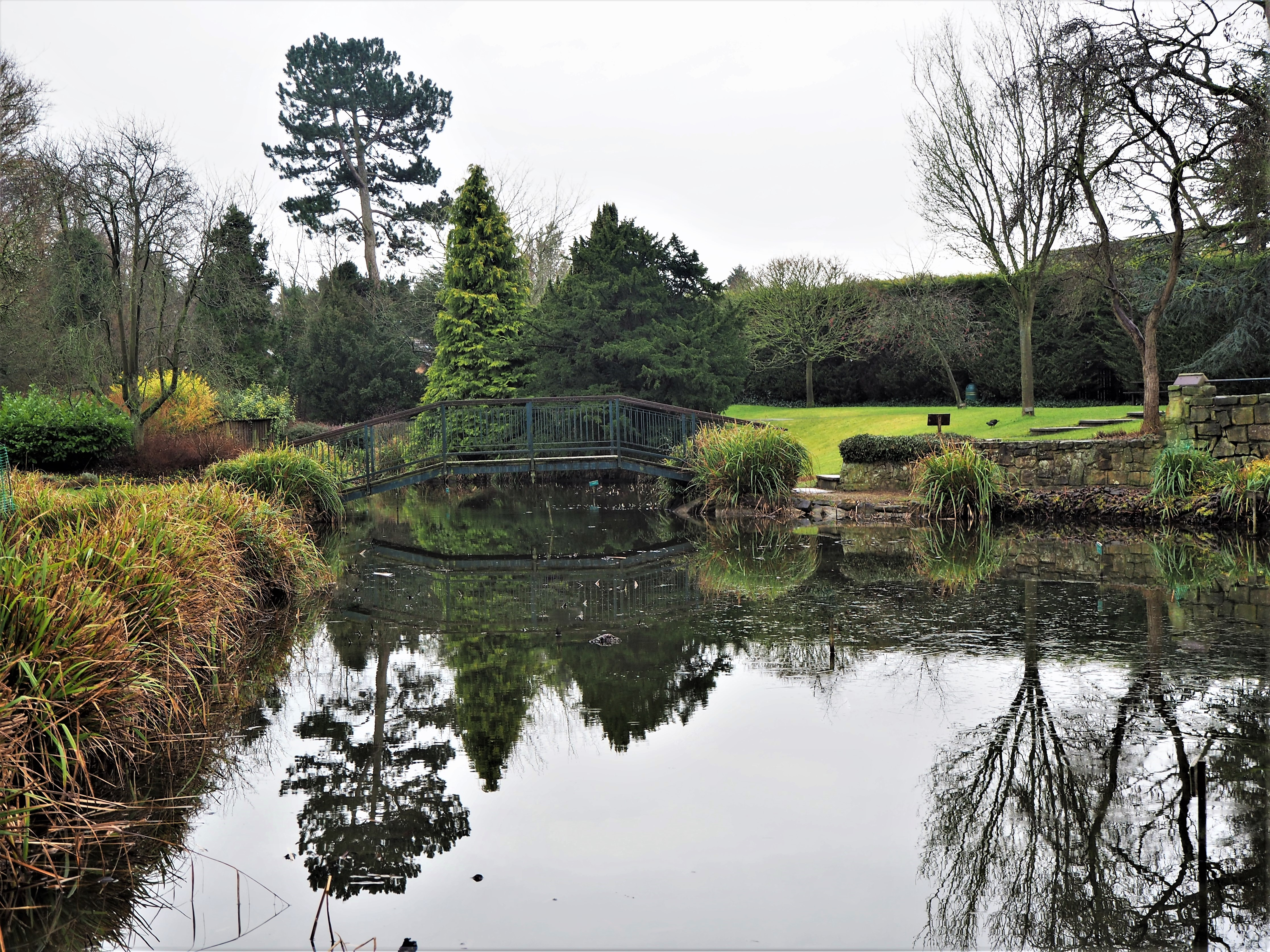 Reflections in a lake at Burnby Hall, Pocklington