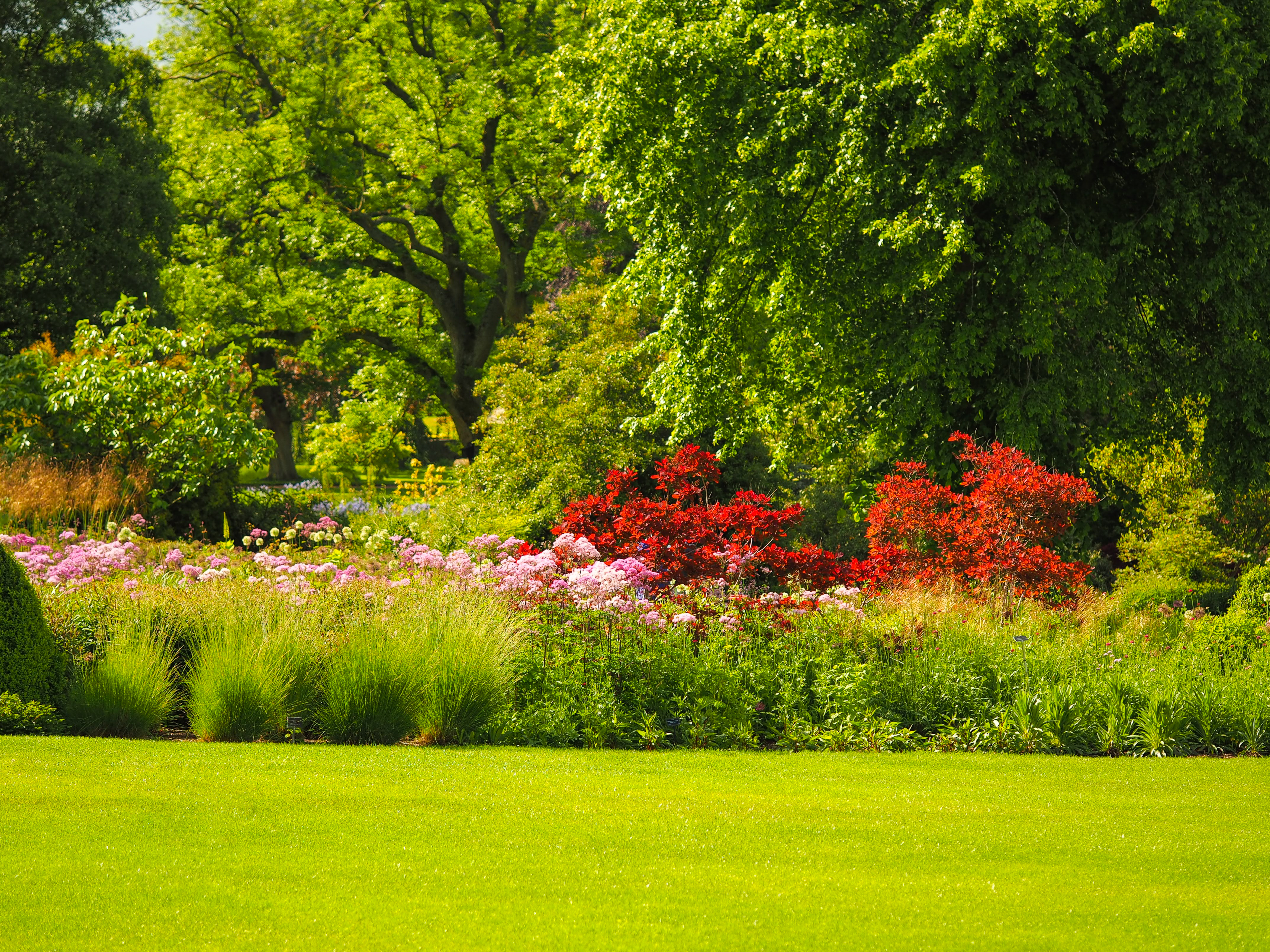 Summer colours at Harlow Carr