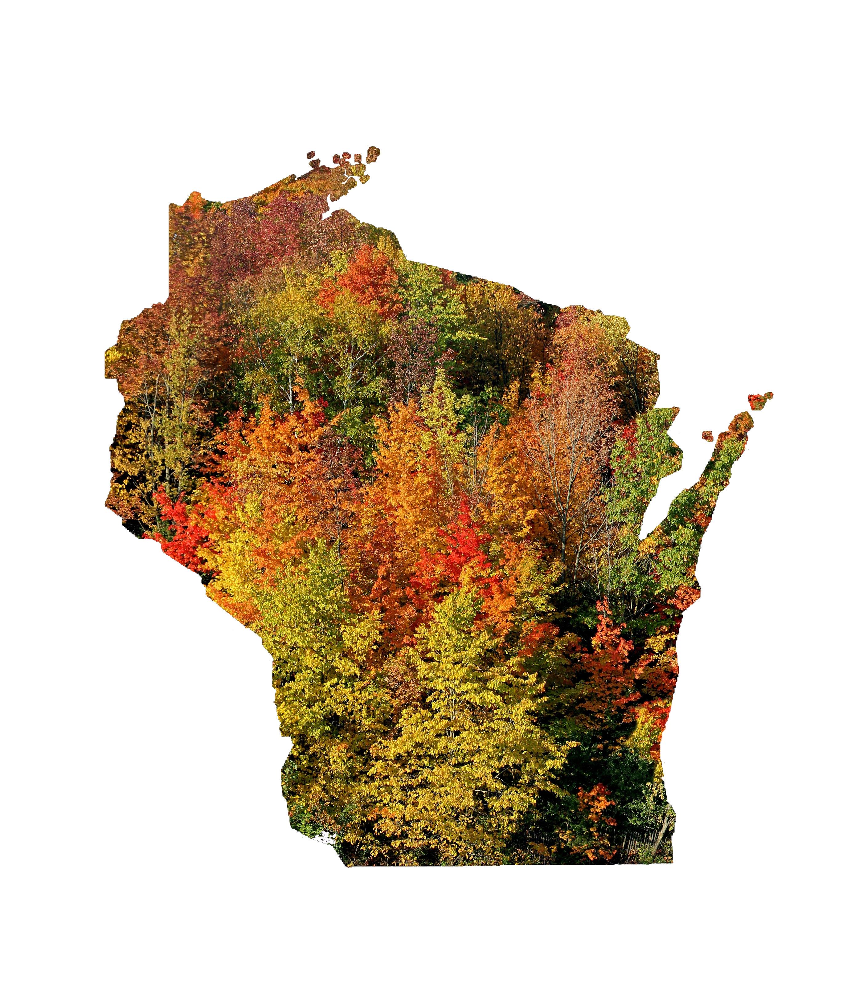 Wisconsin state shape with fall colors
