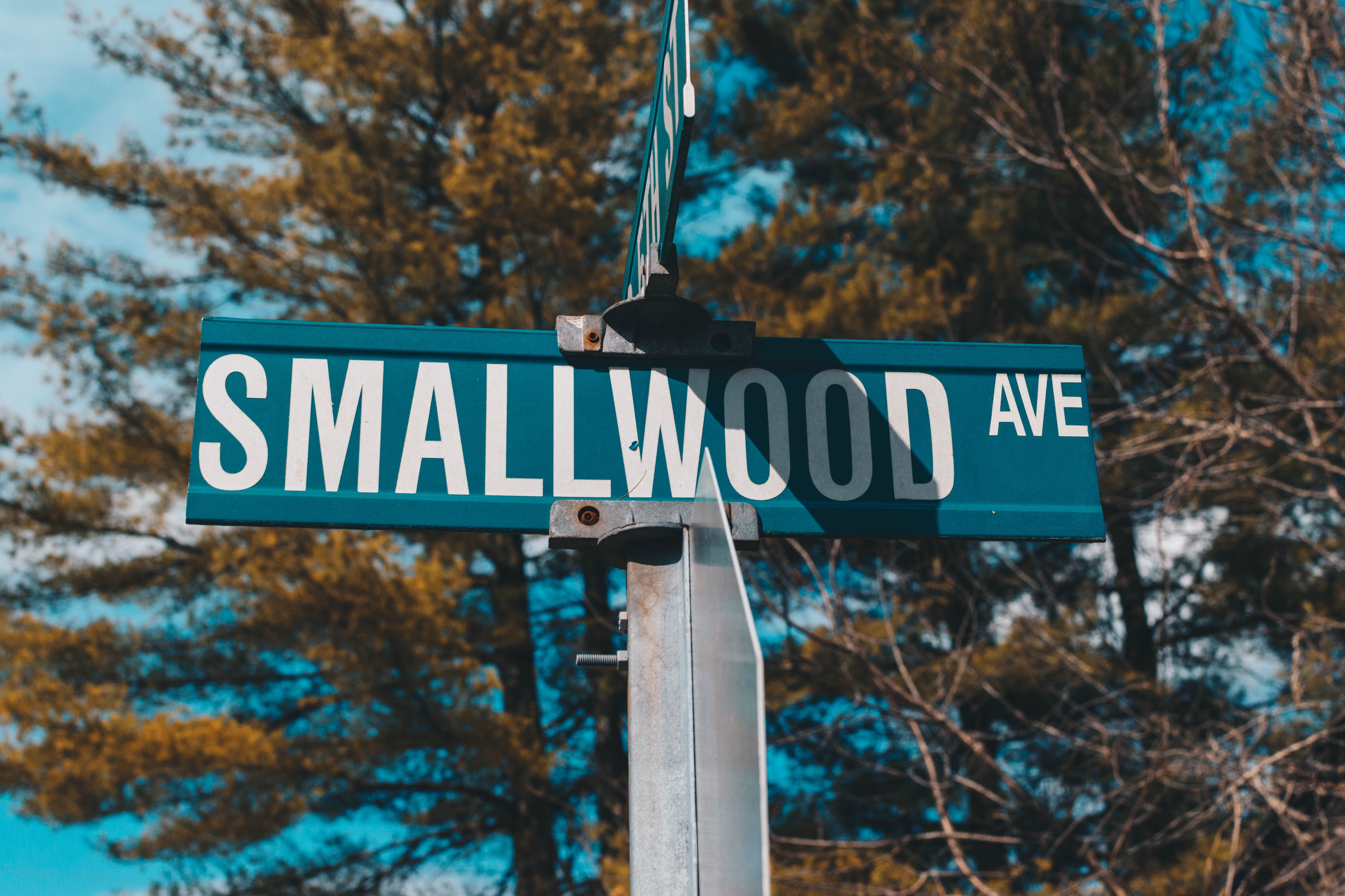 Small Wood AVE
