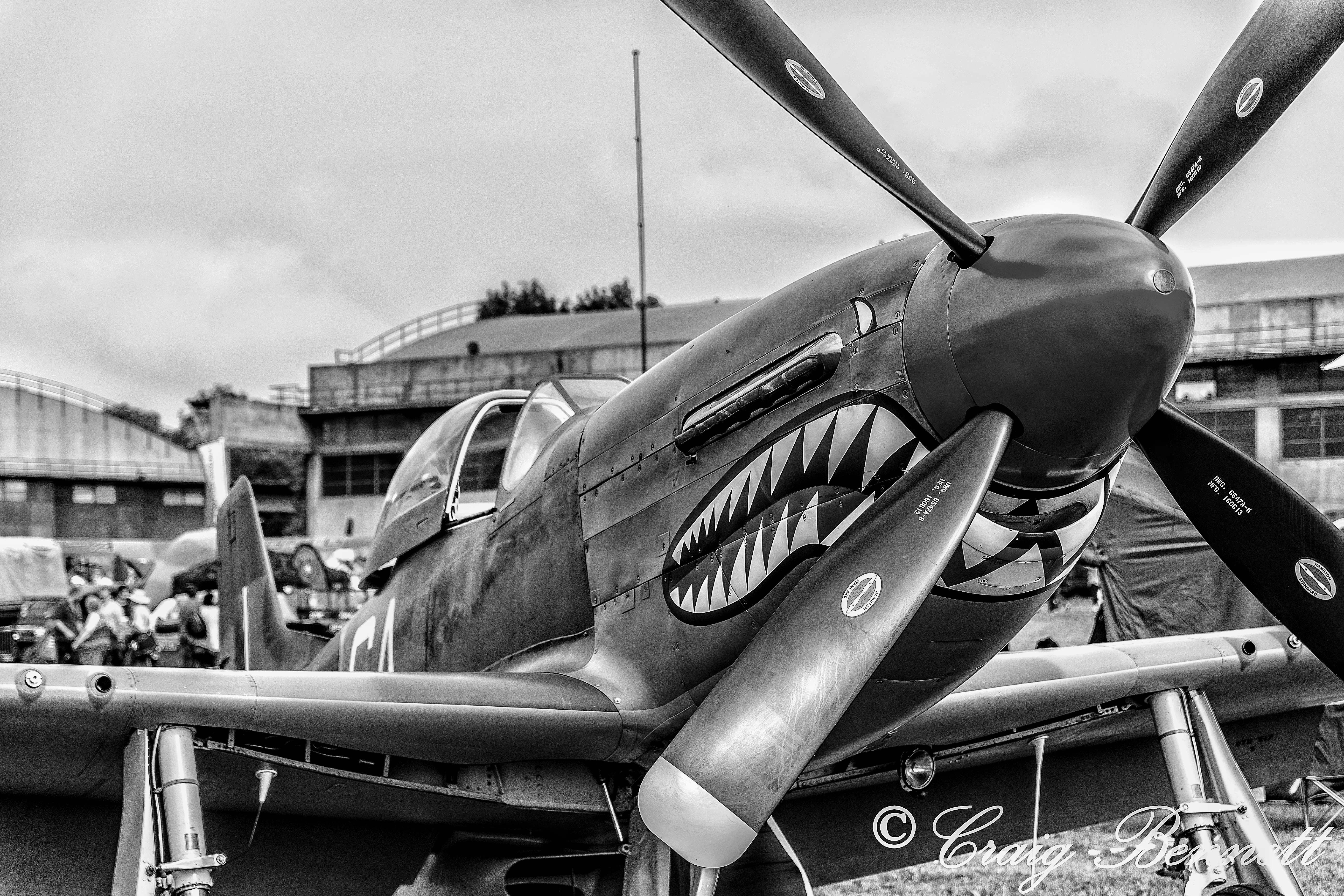 Mustang at the Cosford airshow 2018