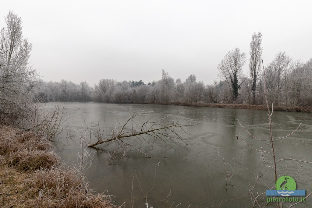 Frozen lake and landscape at Tolcinasco