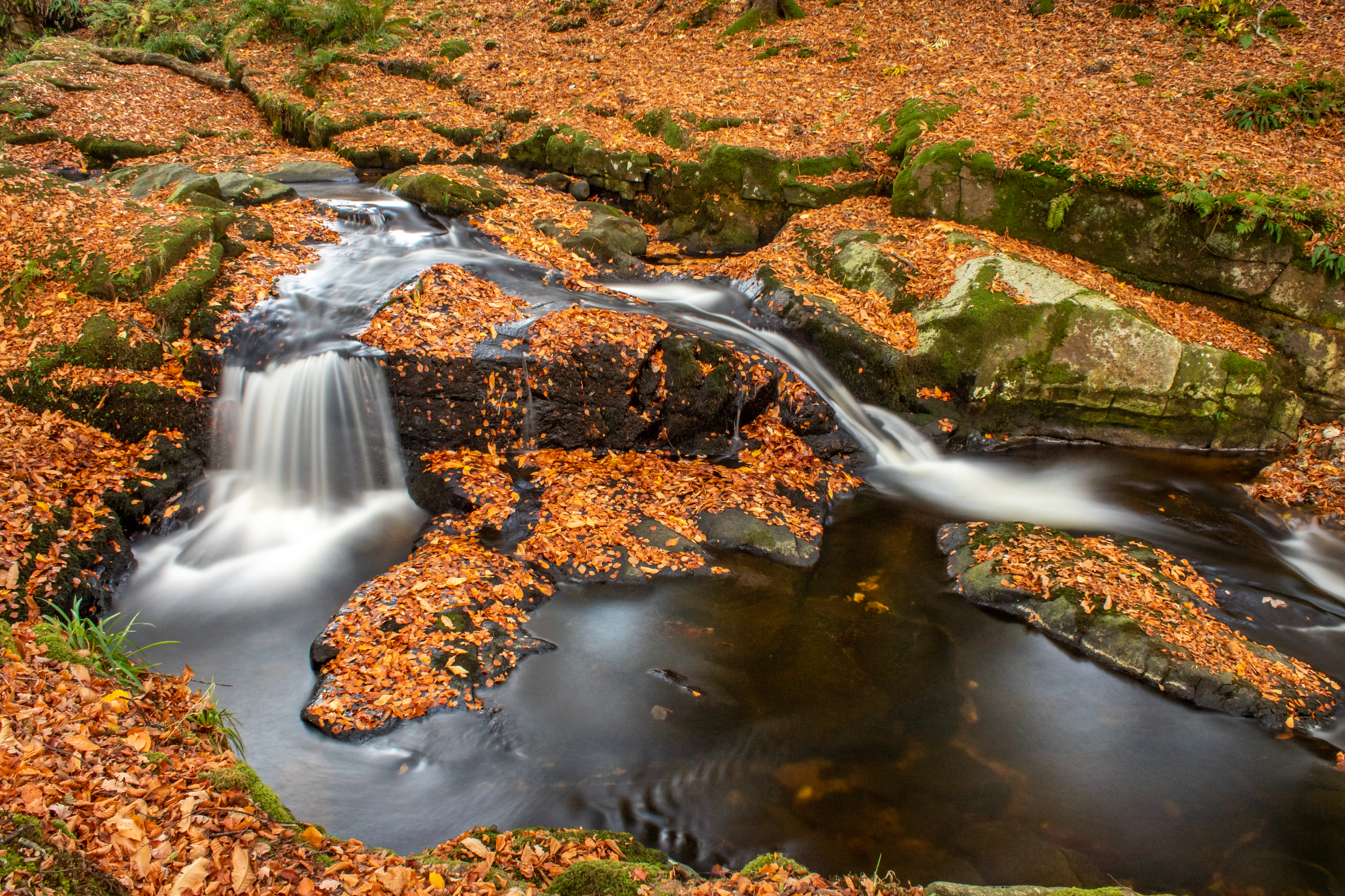 River Tumbling into a Bowl in Autumn, Cloughlea, County Wicklow