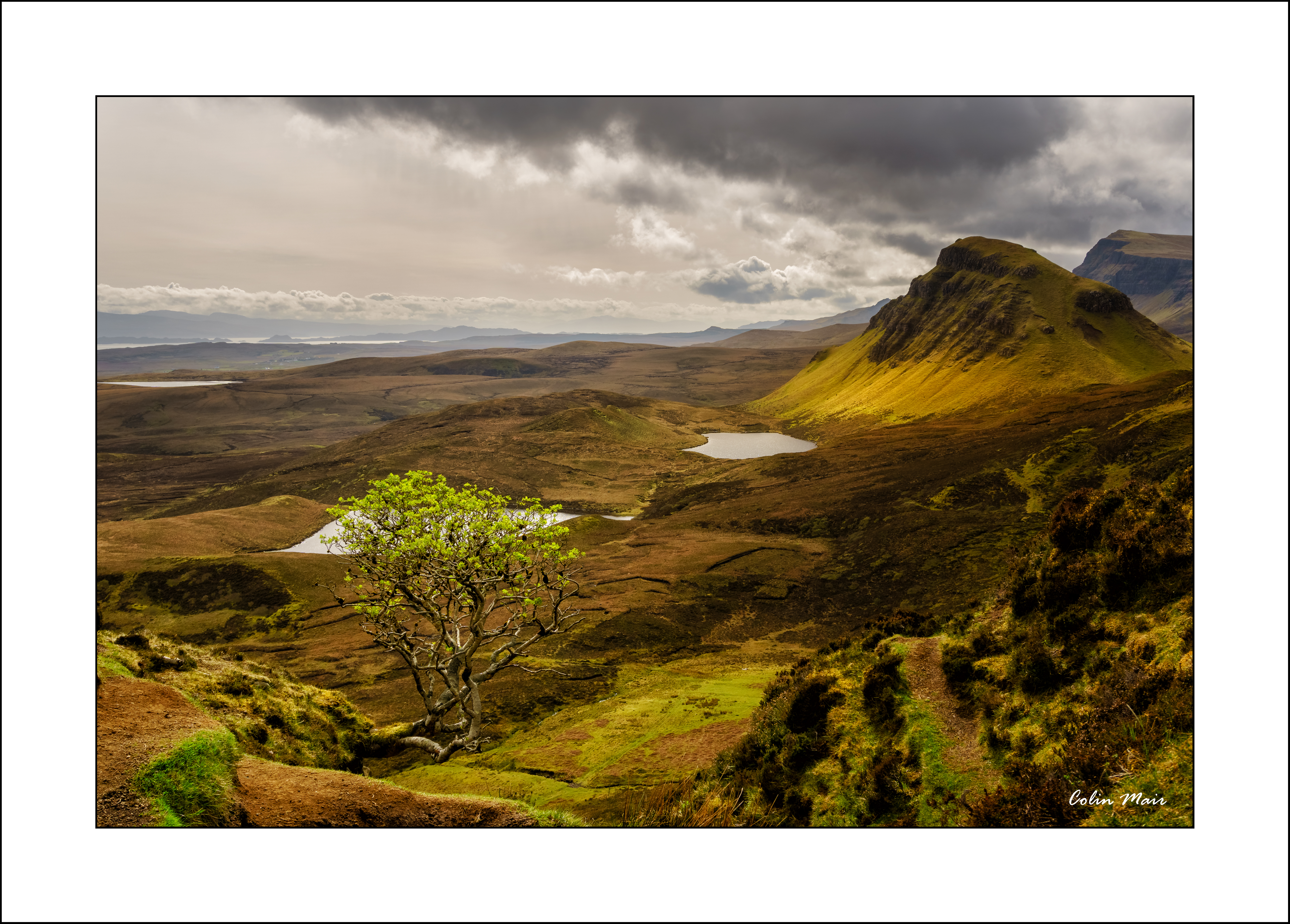 Lone Tree - 2019-04-28th, Skye, Scotland, UK
