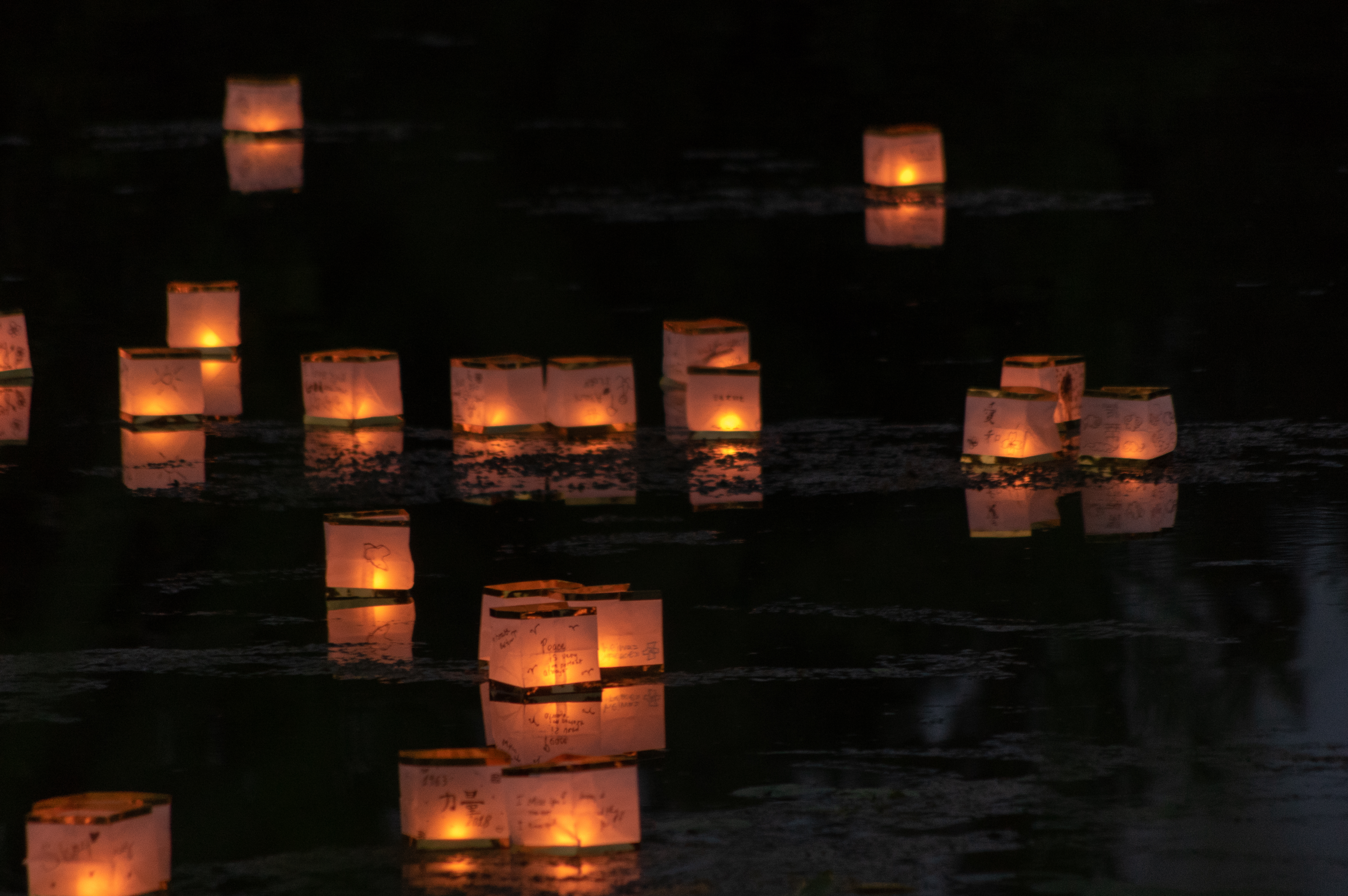 Floating Paper Candle Lanterns - Reflections