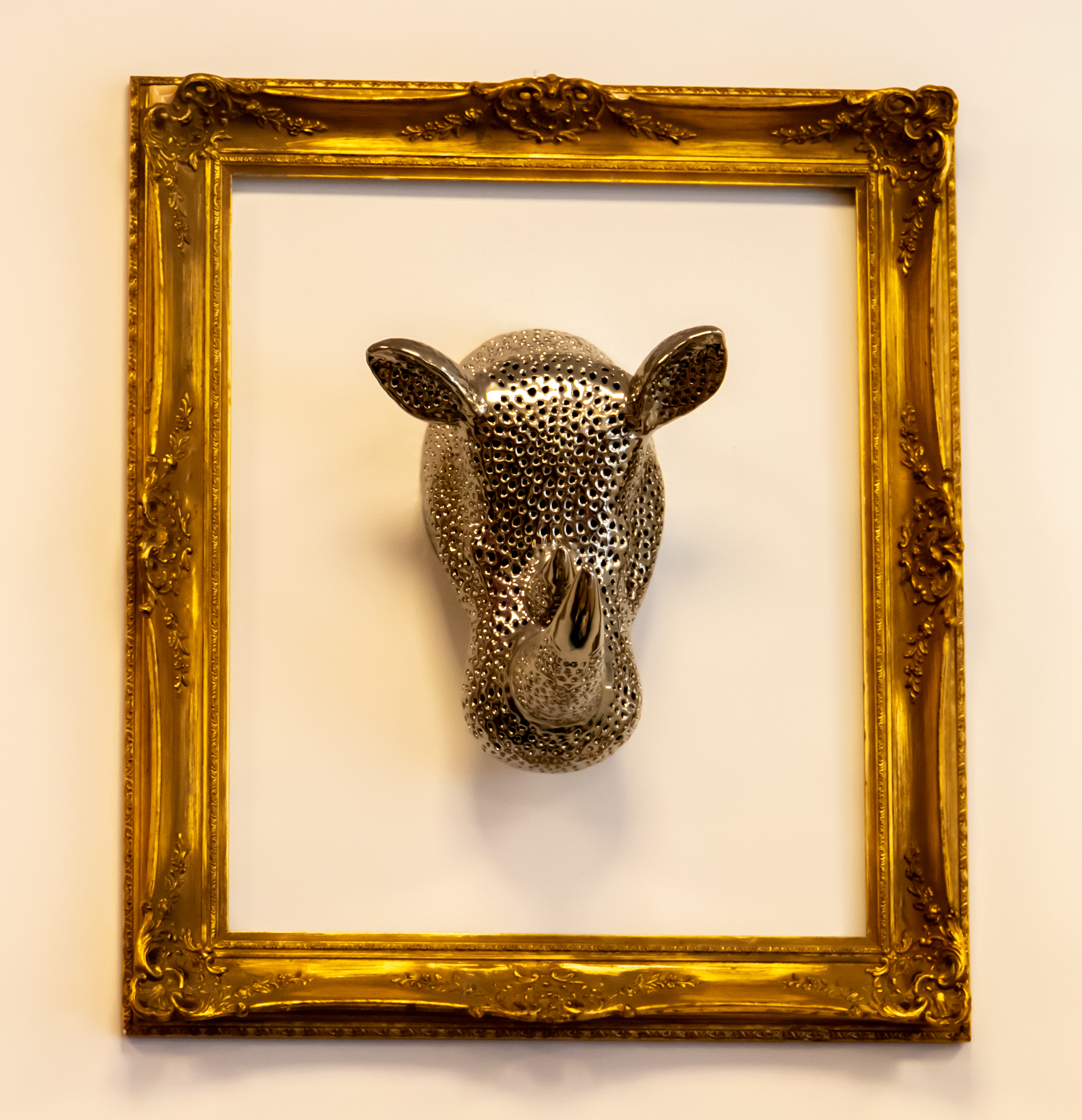 Rhino head in a frame by Clive Wells