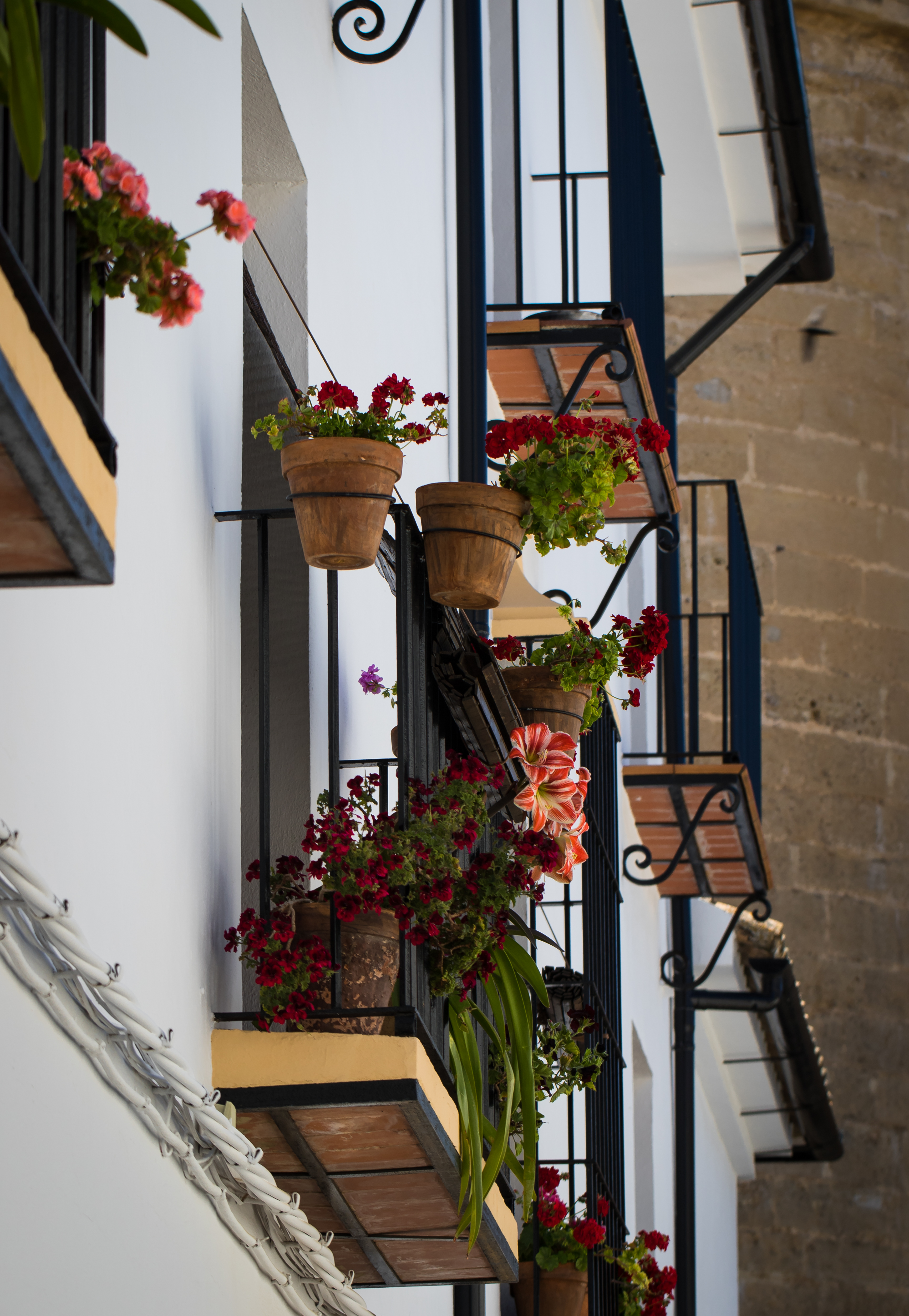 Flowers on a house in Spain