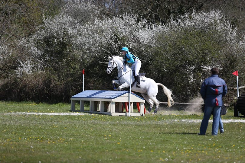 Eddy at Bovington eventing