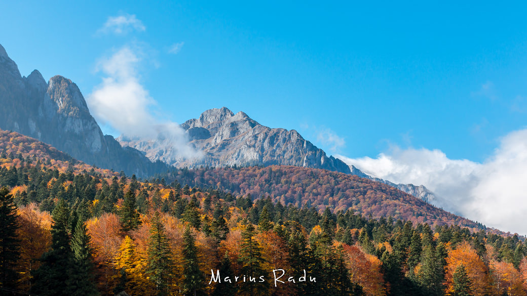 Autumn mountain and forest