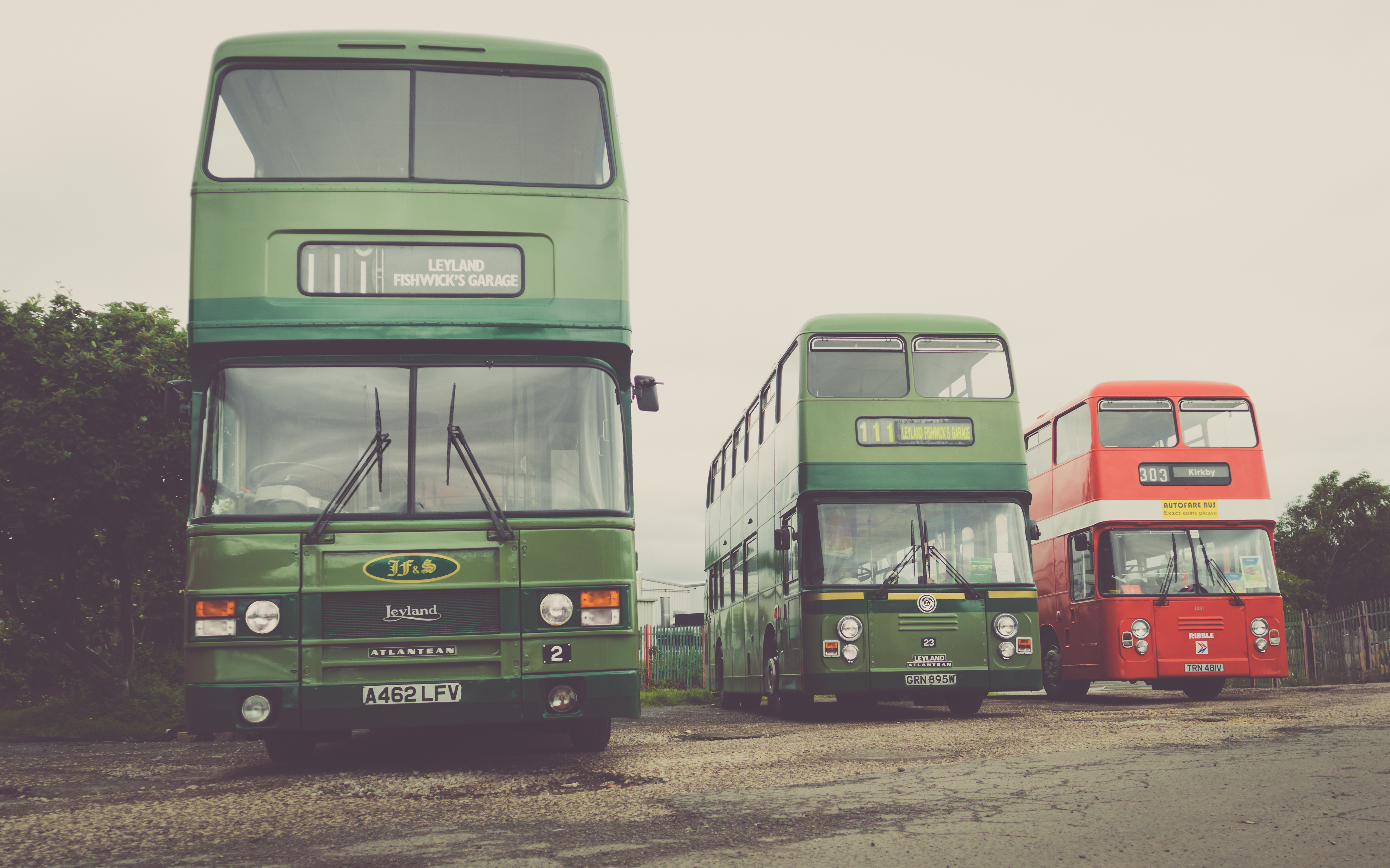 Three double deckers