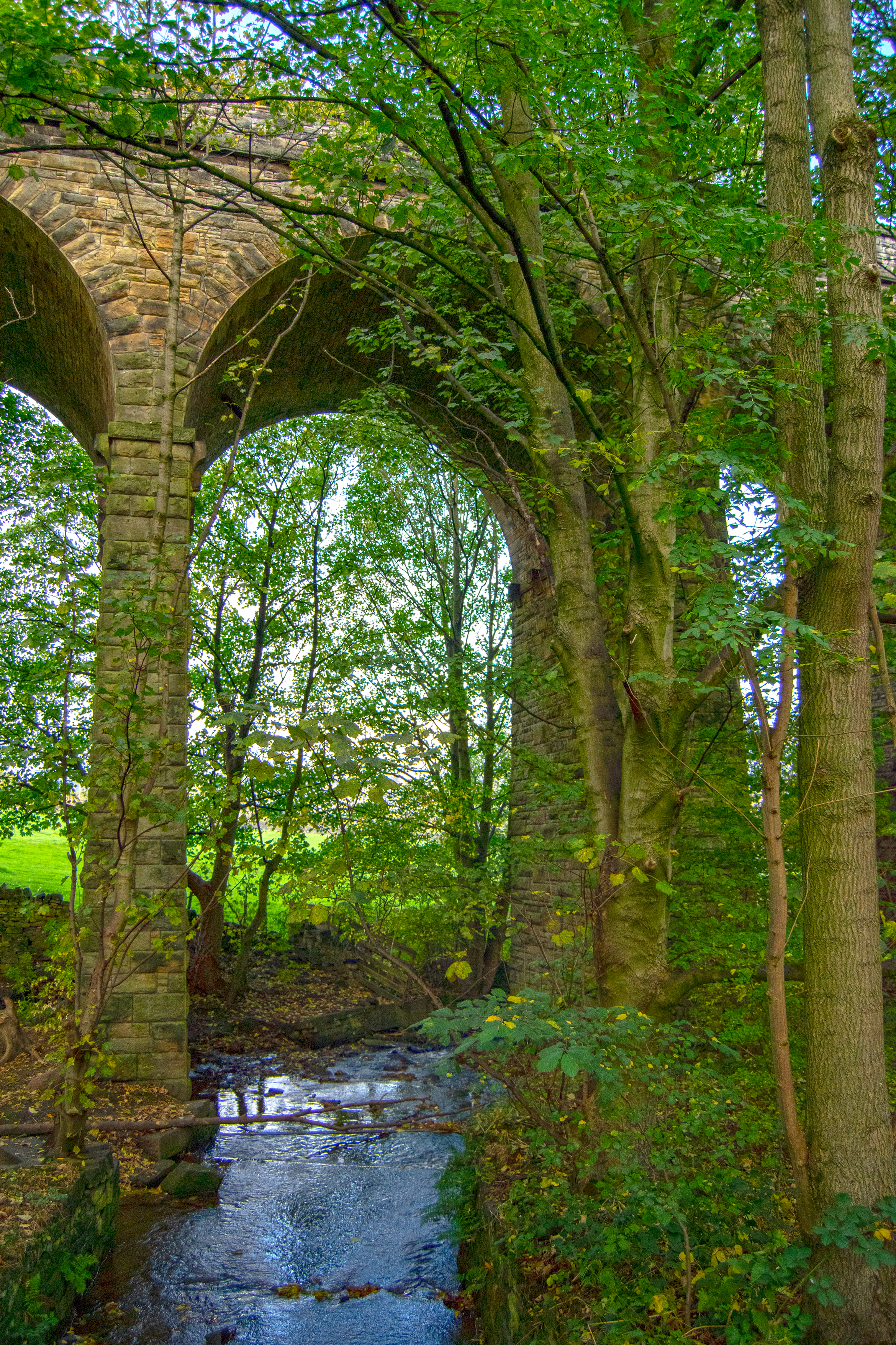 Holywell Brook under the Arch.