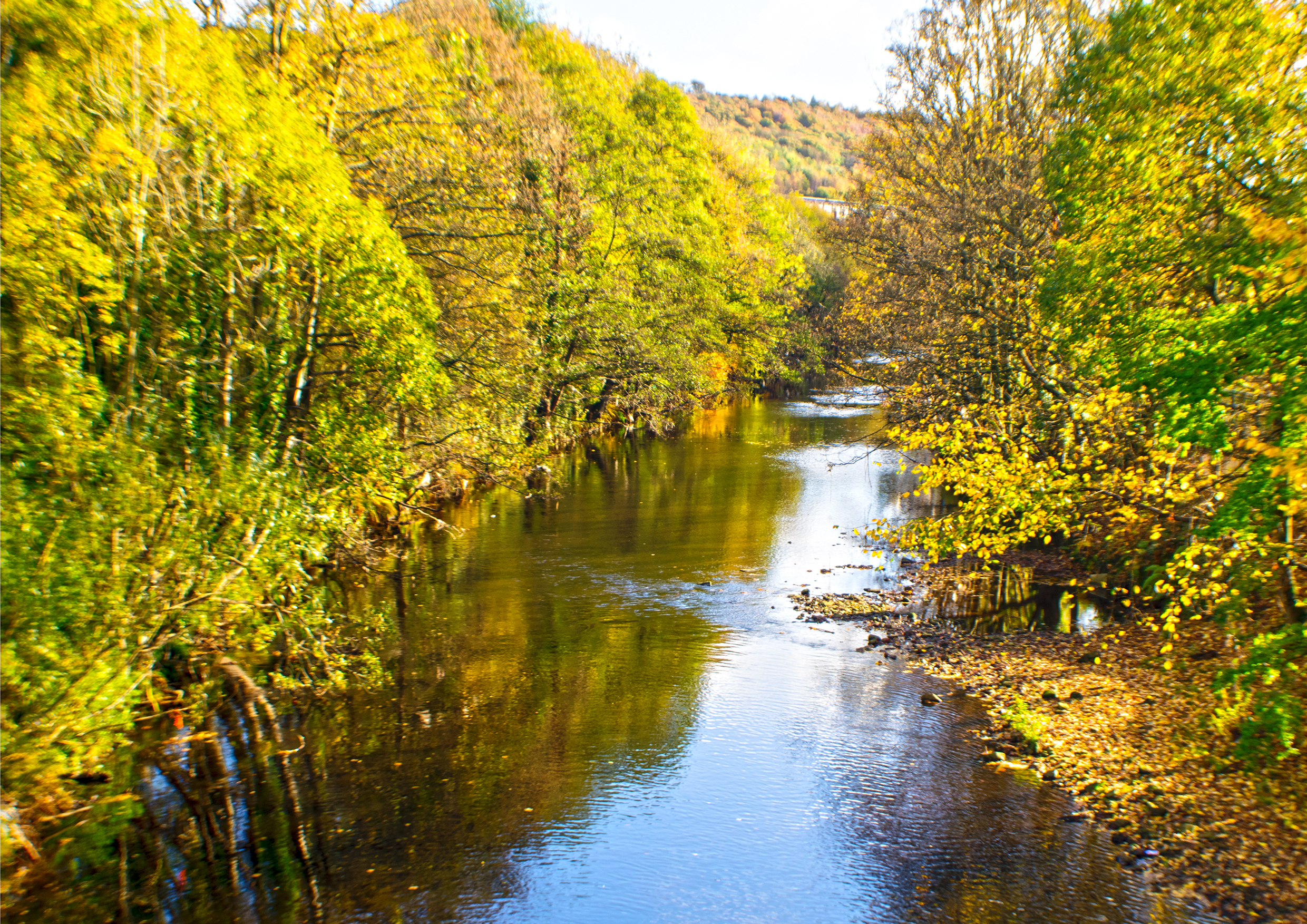Autumn at the River Calder