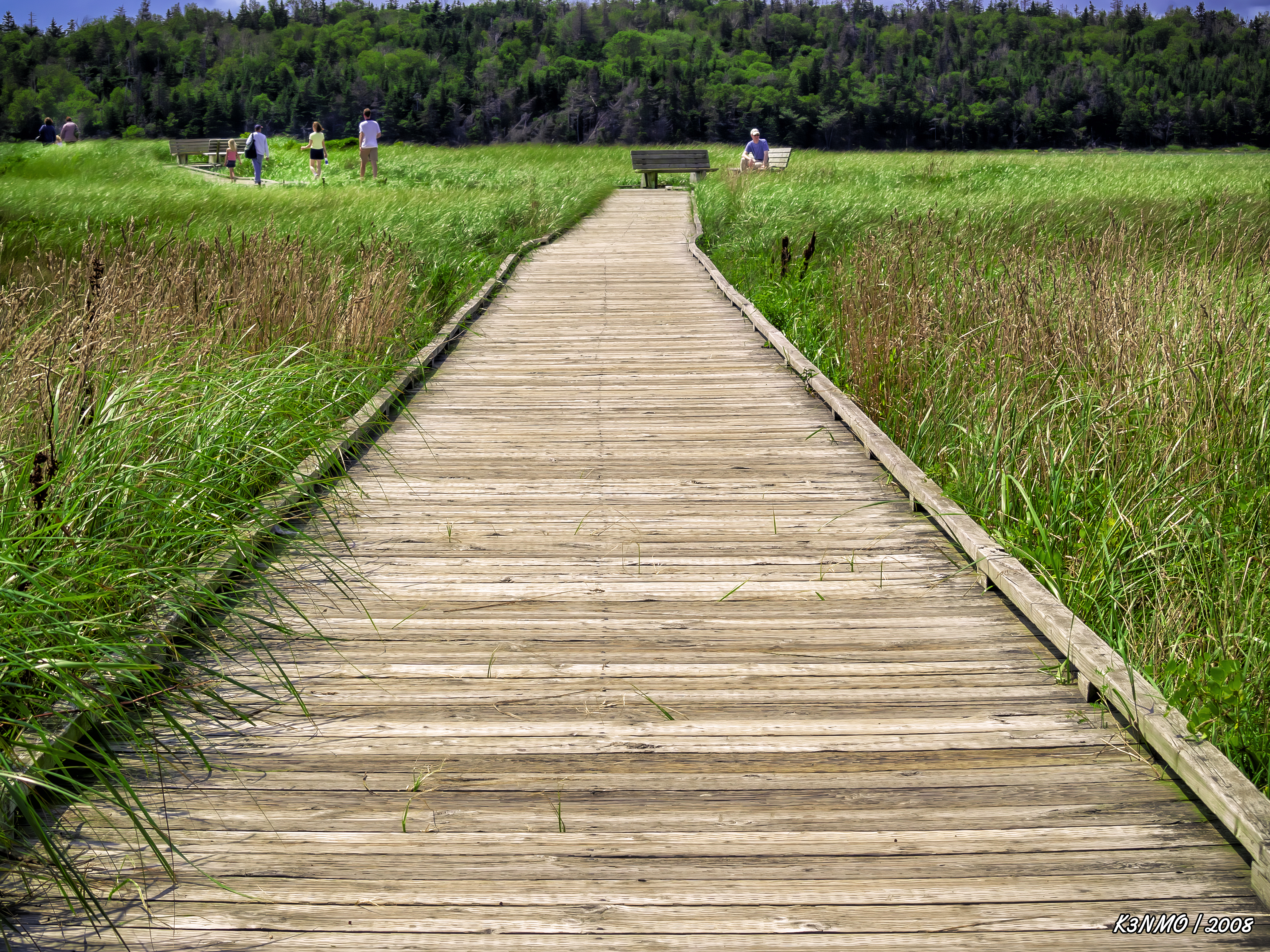 Boardwalk at McCormack's Beach Provincial Park
