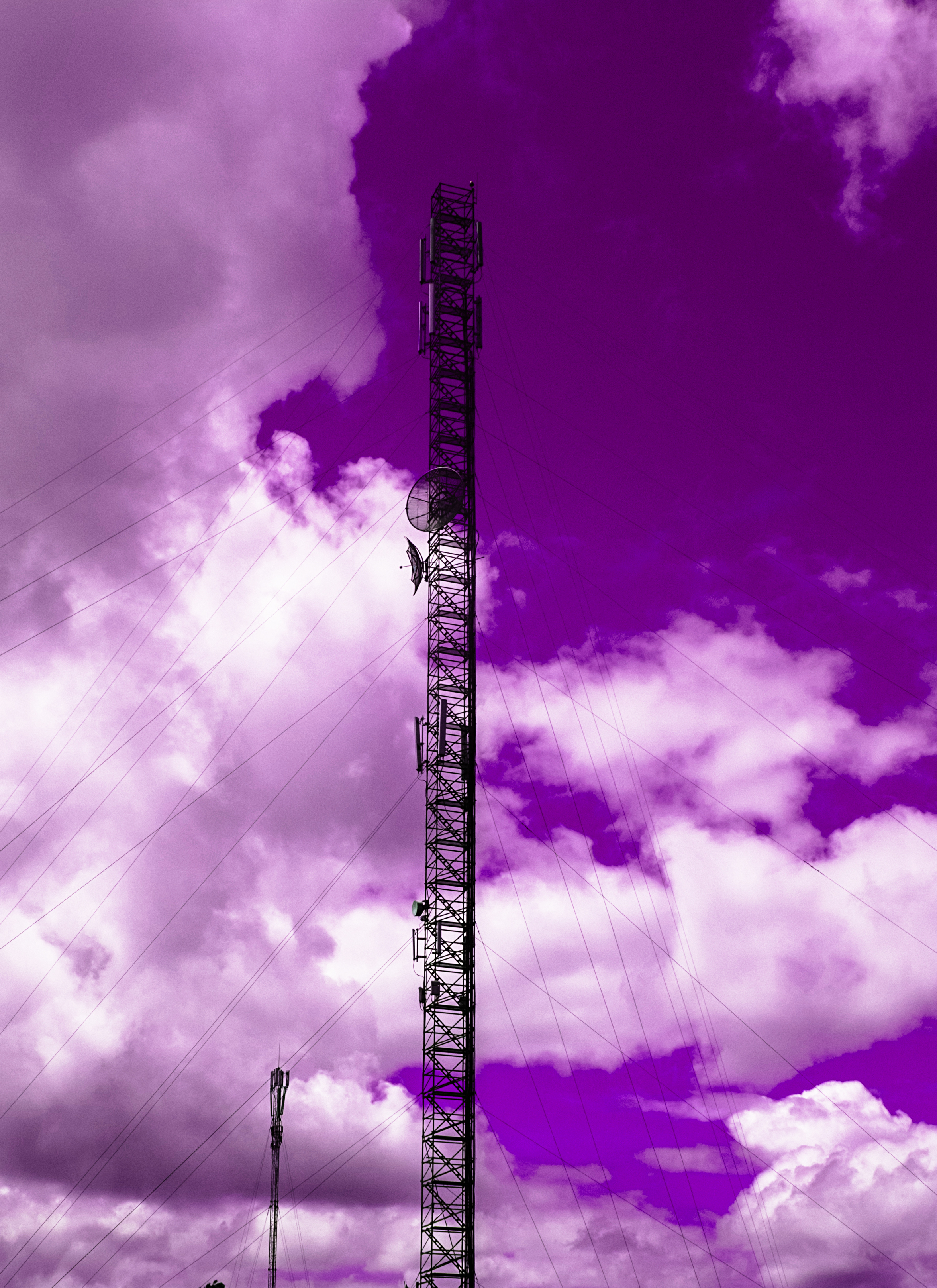 Power poles under the purple sky