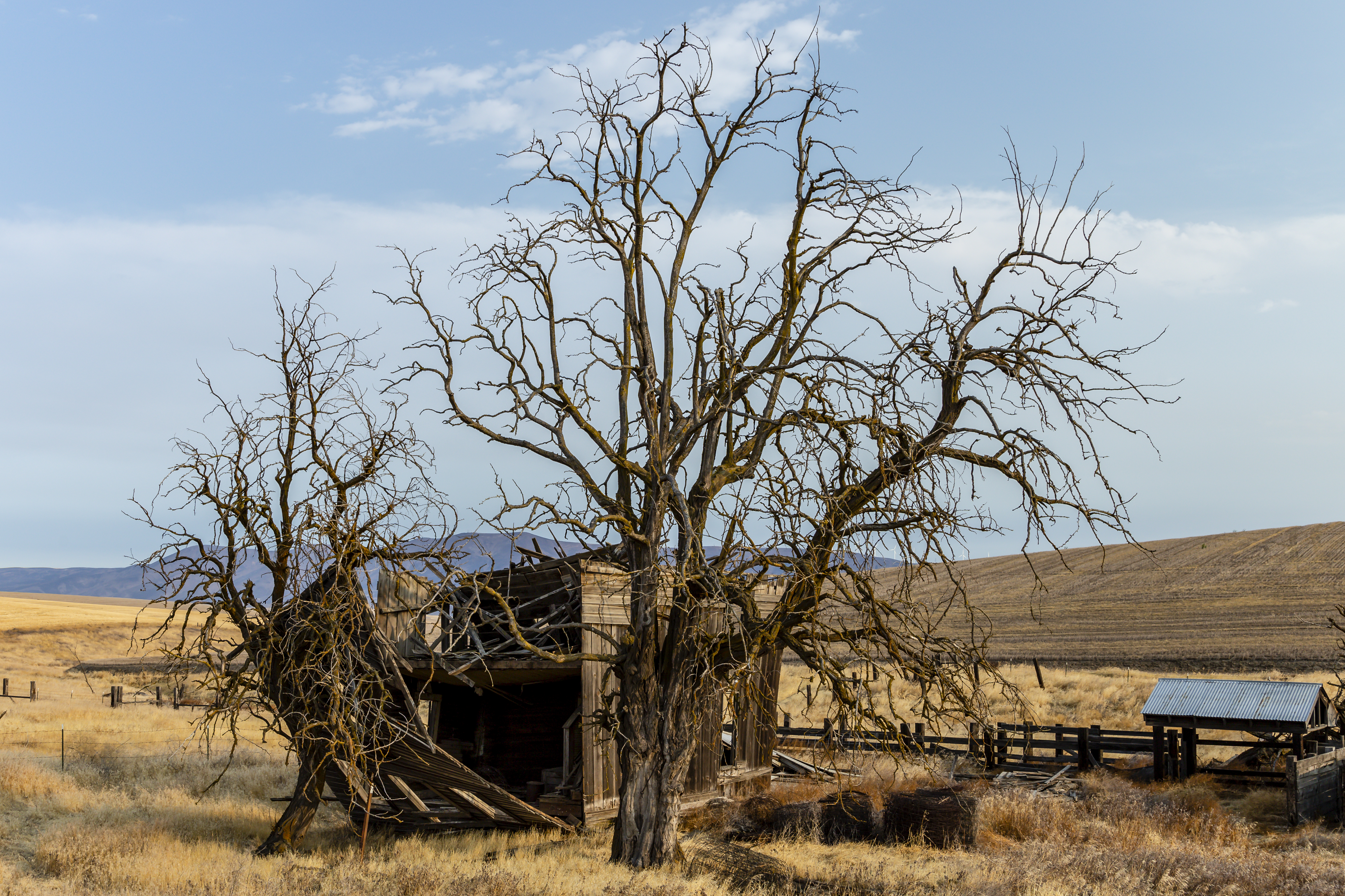 Old Columbia gorge Homestead - McDermand Rd #@