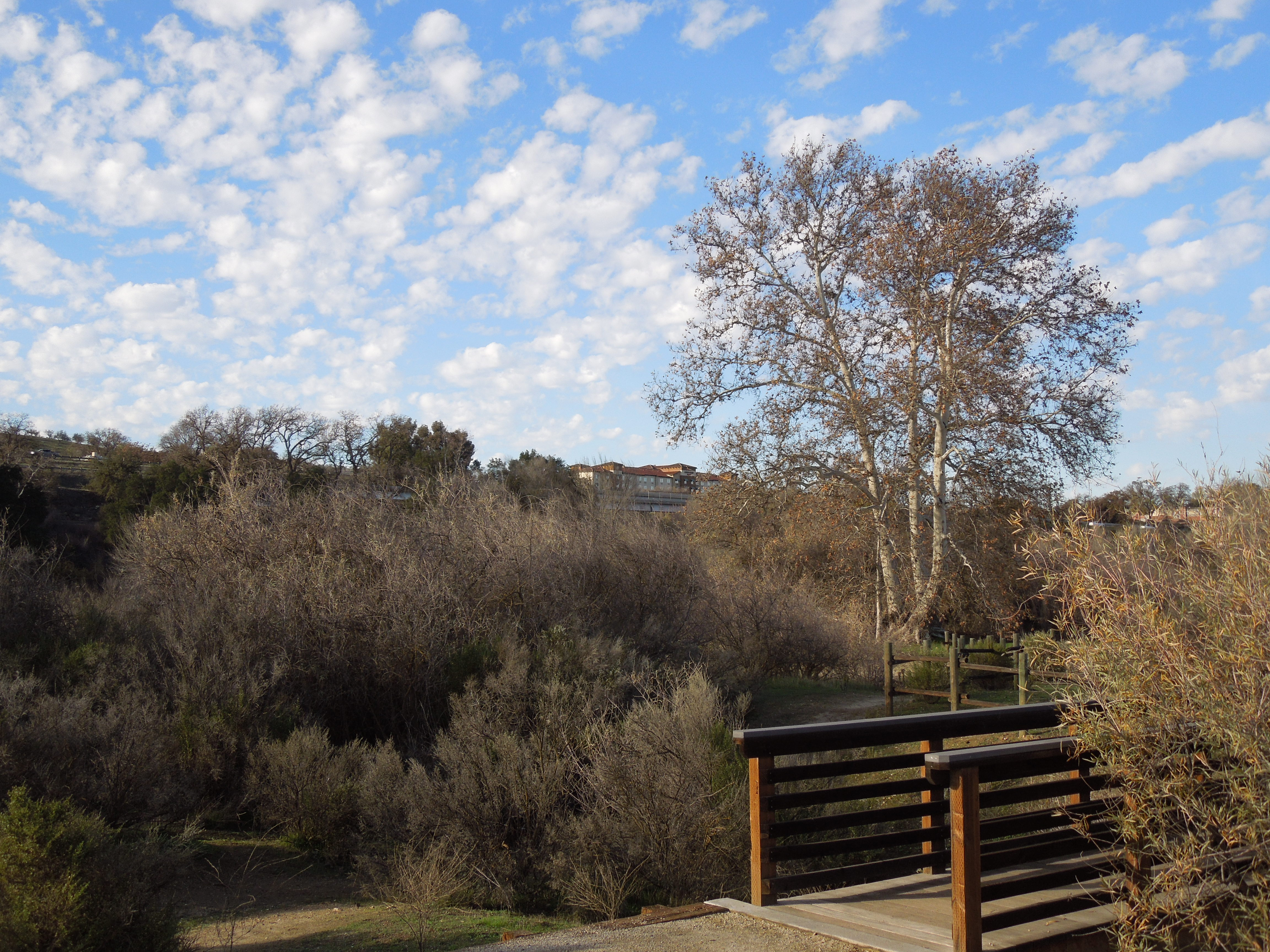 Footbridge over Creek at Larry Moore Park in Paso Robles