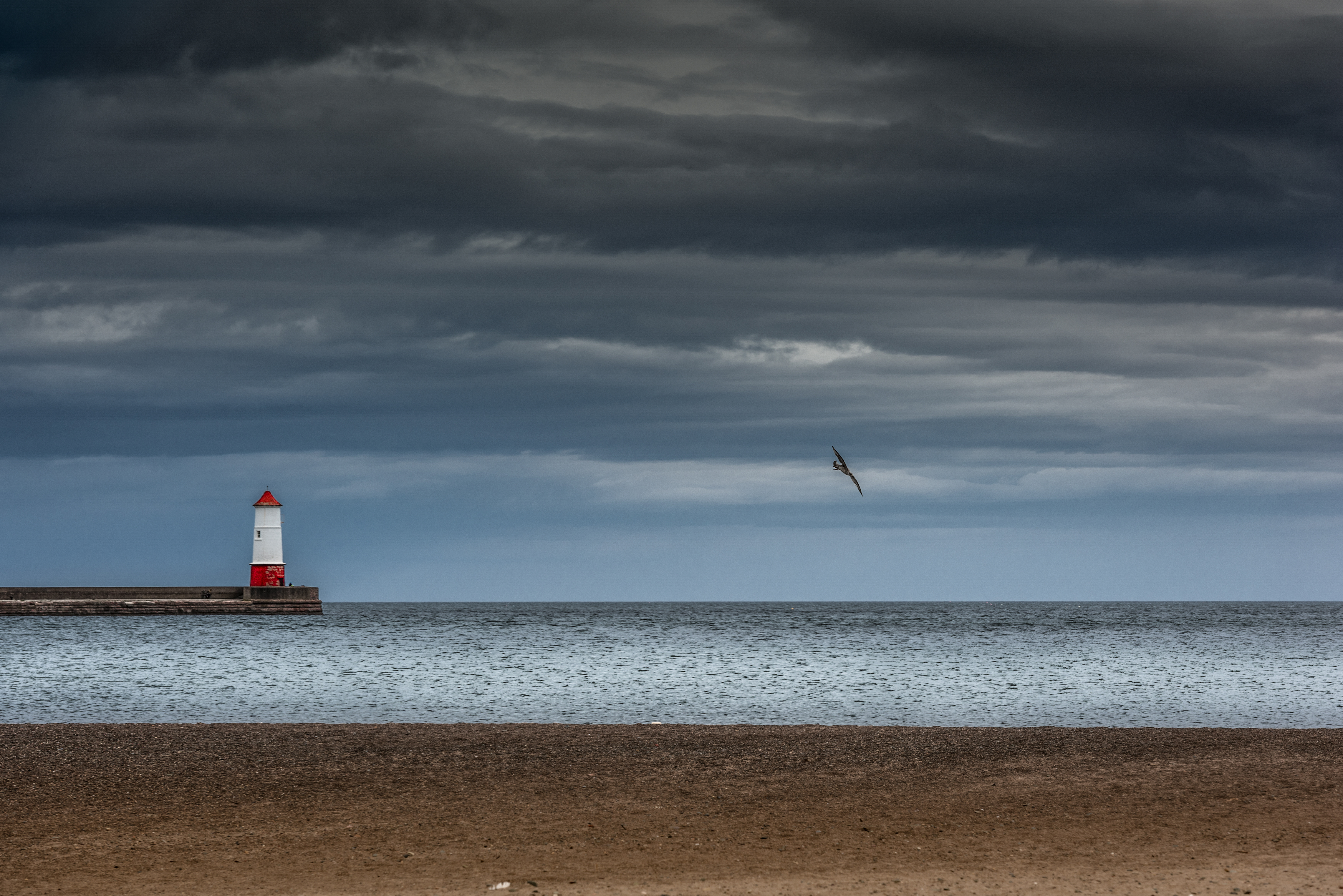 See Lighthouse See Gull See Sea