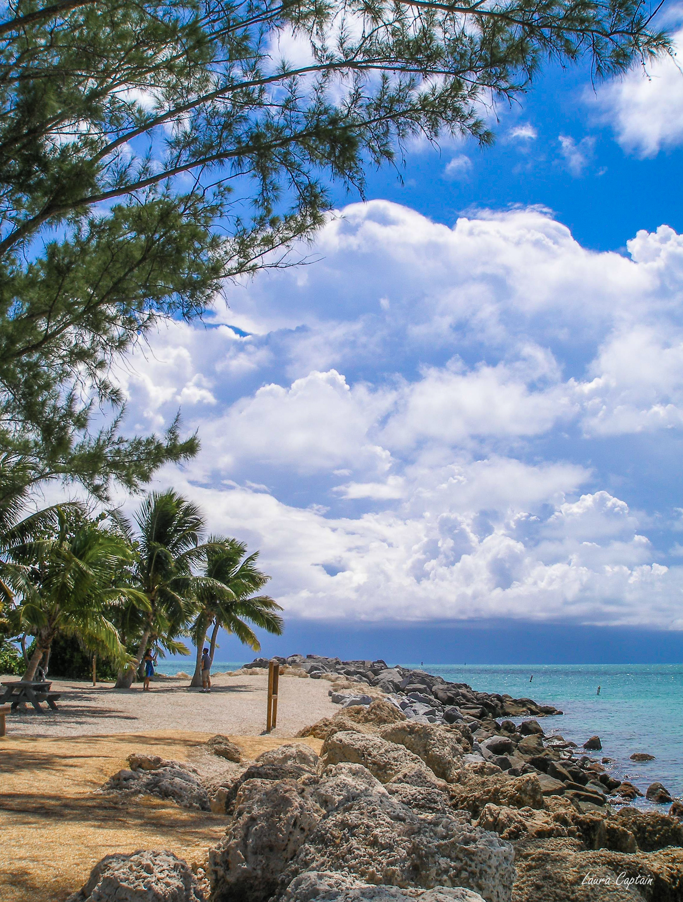 Sunny rocky beach in Fort Zachary Taylor Historic State Park in Key West FL US